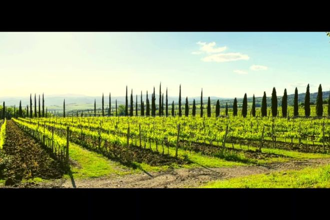 Cruises on the Road in Tuscany, Lucca, Italy
