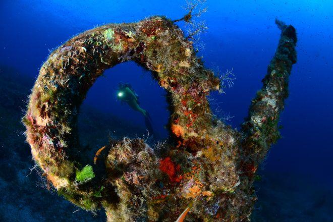 Diving in Elba Biodola, Portoferraio, Italy