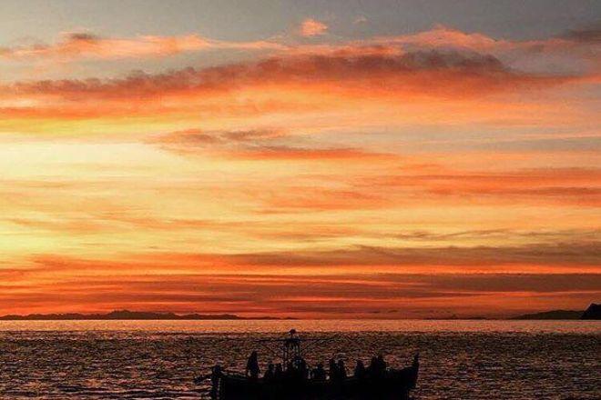 Enjoy Cinqueterre Boat Tours, Manarola, Italy