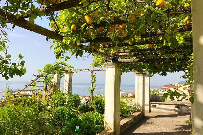 Giardino della Minerva, Salerno, Italy