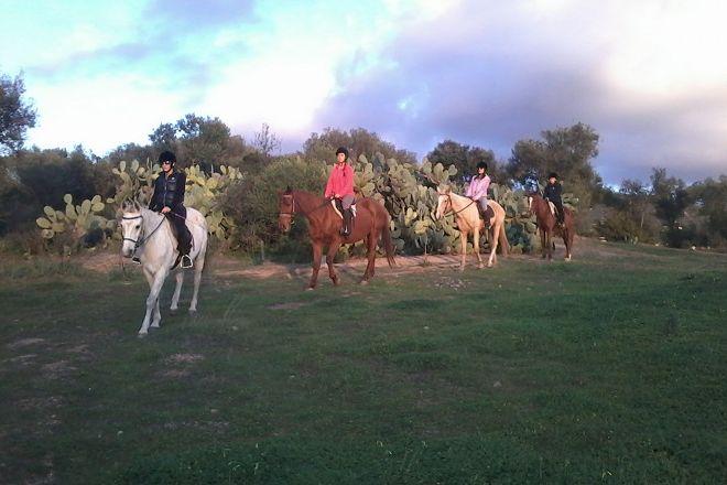 Officina Equestre, Quartu Sant'Elena, Italy