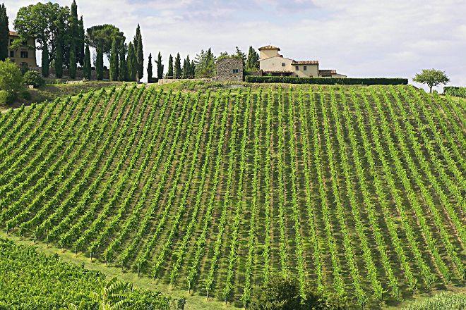 Scenic wine tours in Tuscany, Loro Ciuffenna, Italy