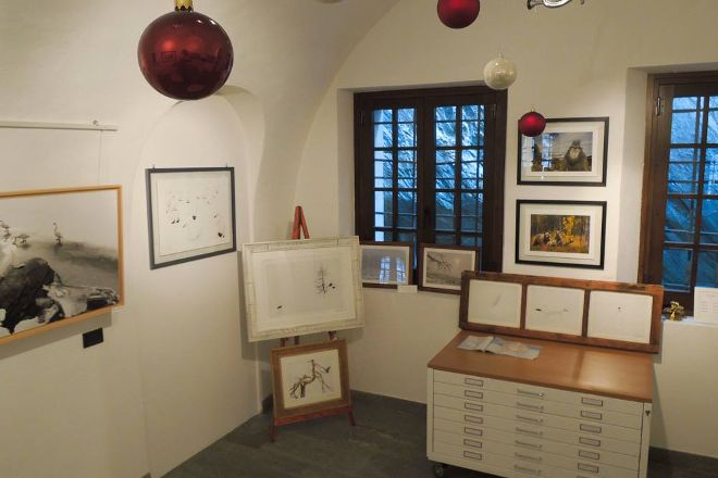 The Little Wild Gallery, Bard, Italy