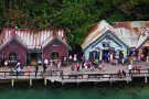 Dolphin Cove Ocho Rios