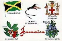 PG Tours Jamaica Tours - Day Tours, Jamaica