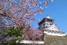 Kokura Garden
