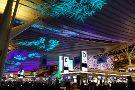 Raffine Haneda Airport International Passenger Terminal