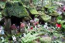Sasuke Inari Shrine