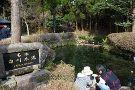 Shirakawa Springs