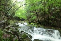Akame Shijuhachi Waterfall, Nabari, Japan