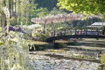 Ashikaga Flower Park, Ashikaga, Japan