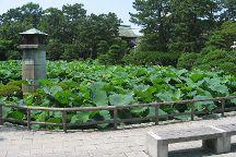 Hakusan Park, Niigata, Japan