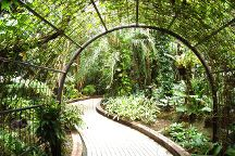 Kyoto Botanical Garden, Kyoto, Japan
