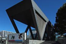 Museum of Contemporary Art Tokyo, Koto, Japan