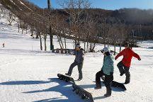 Niseko Winterlab, Niseko-cho, Japan