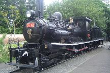 Ome Railway Park, Ome, Japan