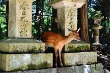 Rokuen, Nara, Japan