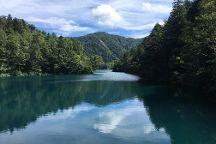 Shigakogen Plateau, Yamanouchi-machi, Japan