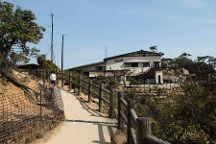 Shishiiwa Tenbodai, Miyajima, Japan