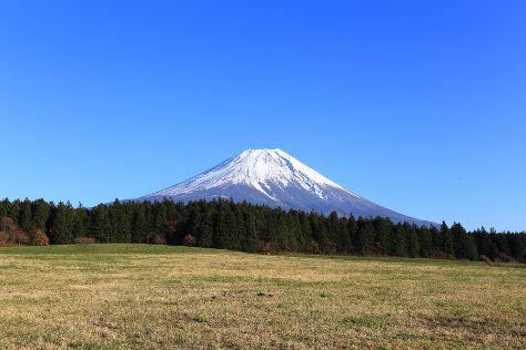 Fuji National Park