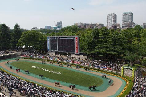Tokyo Horse Racetrack, Fuchu, Japan