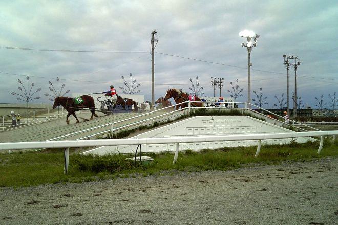 Banei Tokachi Obihiro Horse Race Track, Obihiro, Japan
