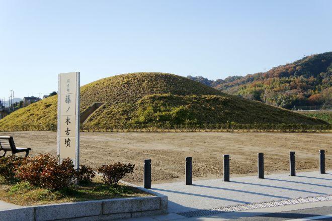 Fujinoki Tombs, Ikaruga-cho, Japan