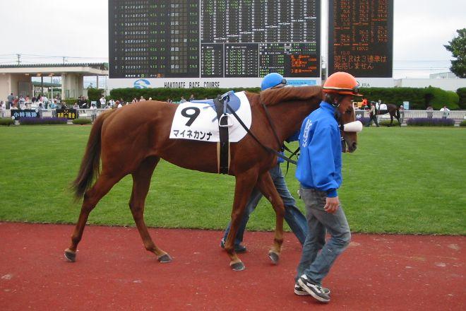 Hakodate Horse Racetrack, Hakodate, Japan