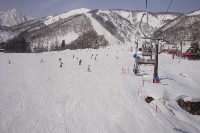 Hakuba Goryu Ski Resort / Alpine Garden, Hakuba-mura, Japan