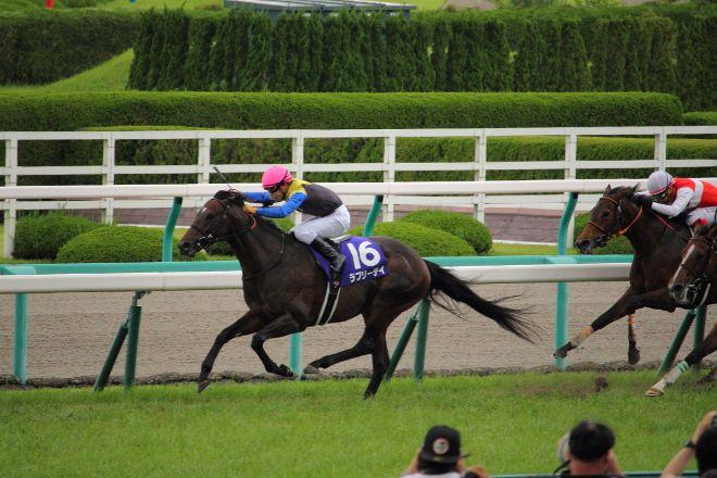 Hanshin Horse Racetrack, Takarazuka, Japan