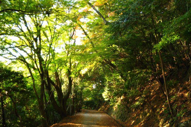 Kasugayama, Nara, Japan