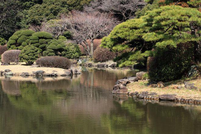 Koishikawa Botanical Garden, Bunkyo, Japan