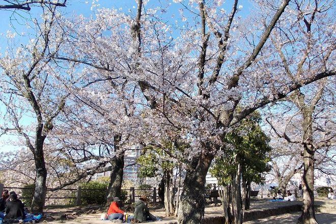 Maizuru Park, Chuo, Japan