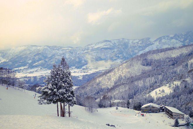Nozawa Onsen Ski Resort, Nozawaonsen-mura, Japan