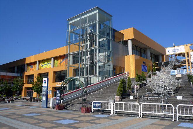 Osaka Aquarium Kaiyukan, Osaka, Japan