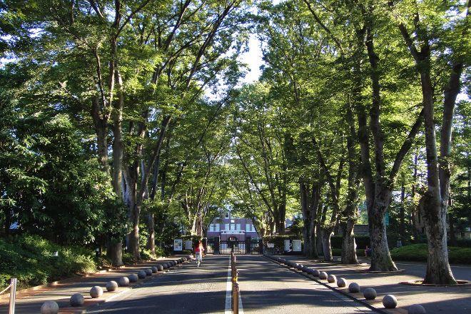 Seikei University, Musashino, Japan