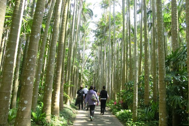 Southeast Botanical Gardens, Okinawa City, Japan