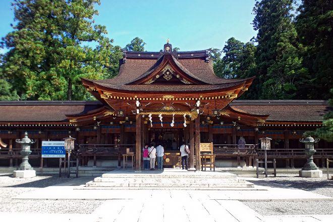 Taga Taisha, Taga-cho, Japan