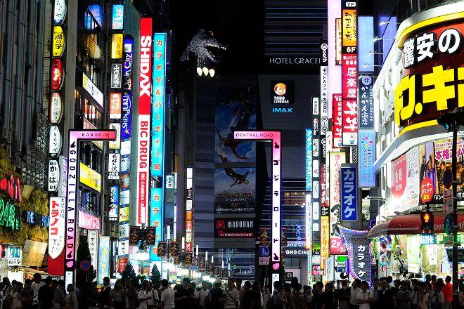 Tokyo Urban Adventures, Tokyo, Japan