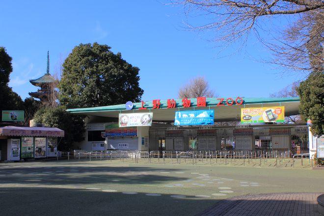 Ueno Zoo, Taito, Japan