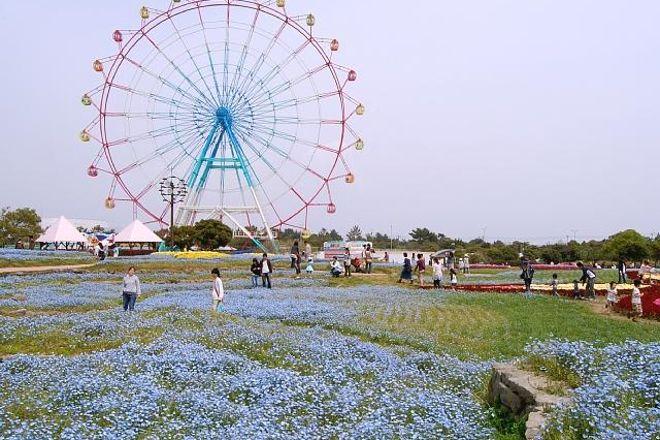 Uminonakamichi Seaside Park, Fukuoka, Japan