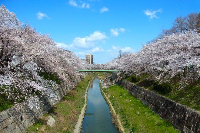 Yamazaki River, Nagoya, Japan