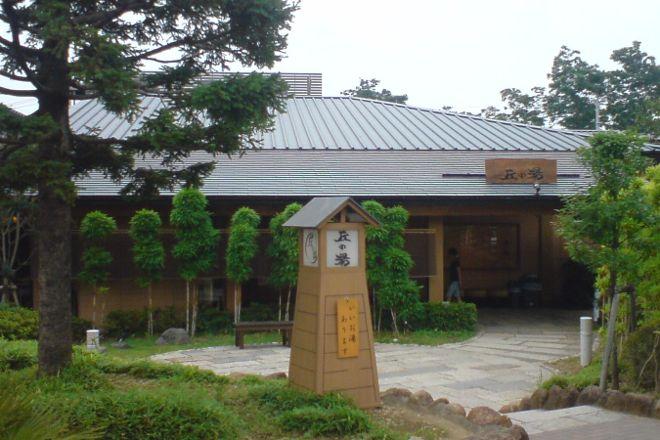 Yomiuri Land, Inagi, Japan