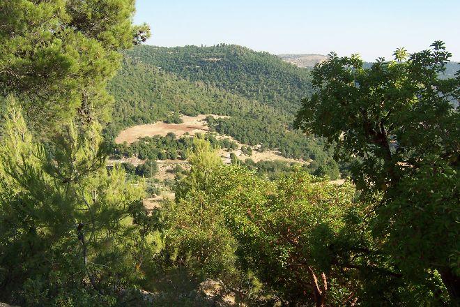 Ajloun Nature Reserve, Ajlun, Jordan