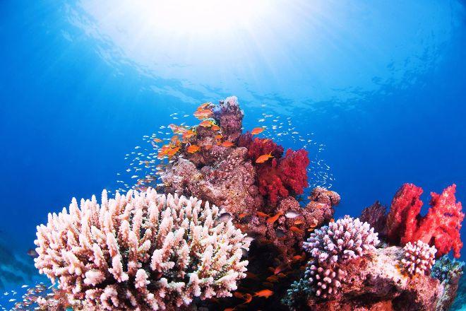 Deep Blue Dive Center, Aqaba, Jordan
