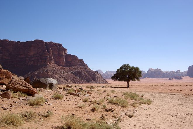 Lawrence's Spring, Wadi Rum, Jordan