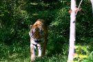 Karaganda State Zoo