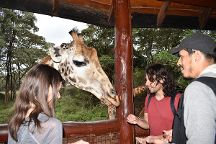 Adventure 360, Nairobi, Kenya