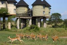 Africa Unike Adventures & Safaris