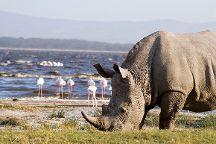 African Beast Tours and Safaris, Nairobi, Kenya